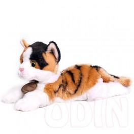 Gato mediano